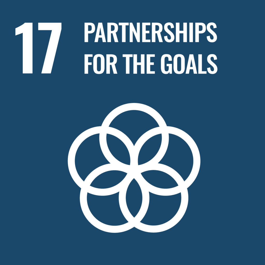 Strengthen the means of implementation and revitalize the Global Partnership for Sustainable Development